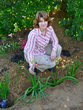 implanting: A Woman planting flowers in the garden Stock Photo