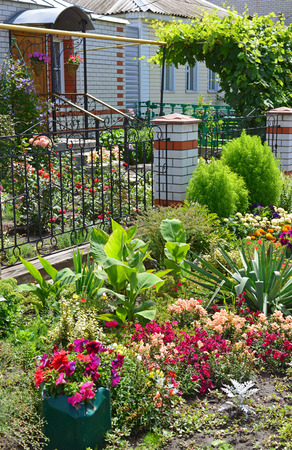 front house: beautiful flower garden in front of the House