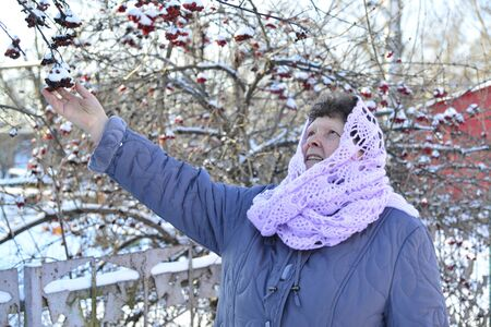 european rowan: Elderly woman in a lilac knitted scarf on her head outdoors