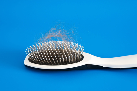 uncombed: Fallen hair on the comb on a blue background Editorial