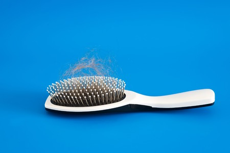 hair tuft: Fallen hair on the comb on a blue background Editorial