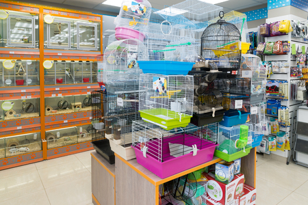 pet store: Moscow, Russia - April 16.2016. Interior of Four paws pet store Editorial