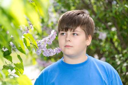 boy smelling a lilac flowers in the park
