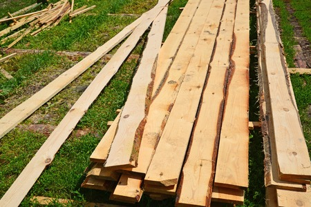 bark carving: Set of Stacked wood pine timber for construction buildings and furniture production