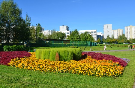 Moscow, Russia - September 01.2016. A flower bed in Zelenograd in Moscow, Russia