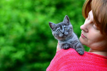 A blue Scottish kitten is sitting on a womans shoulder. Outdoors