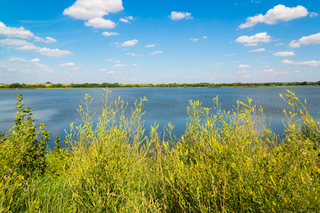 Summer landscape with a lake in central Russia in August. Front focus Stock Photo
