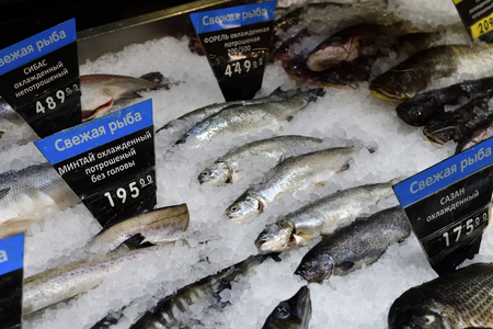 white fish. On the price tags in Russian, fresh fish are written. No logos and a brands.