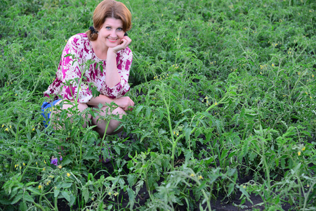 Woman sitting on tomato field in summer