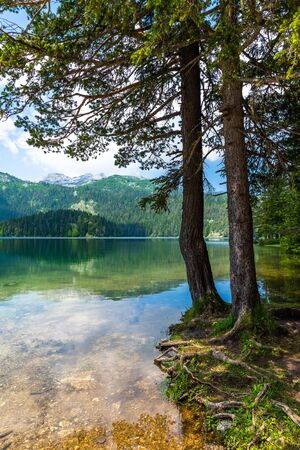 Montenegro, Black Lake in a Durmitor Park