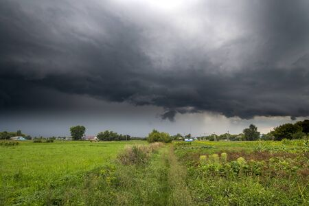 The Summer countryside landscape with a thundercloud