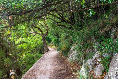 Sun trail - health-improving route in Livadia sanatorium during USSR in Livadia, Crimea