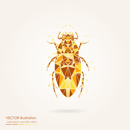 Abstract polygonal beetle. Geometric hipster illustration. Polygonal poster.