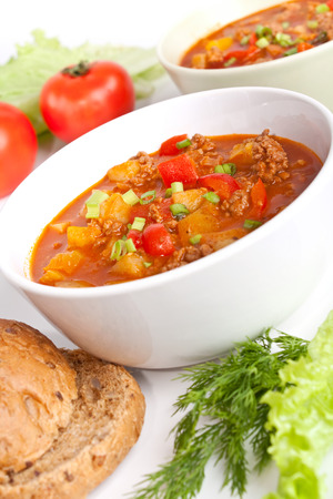two servings of minced meat and vegetable tomato soup photo