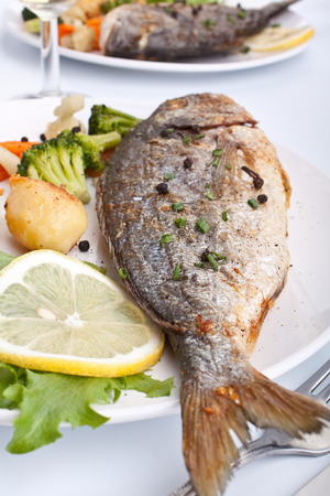 two servings of Sea Bream fish with vegetables on white plate photo
