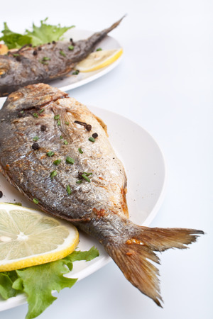 two servings of Sea Bream fish with lemon on white plate photo