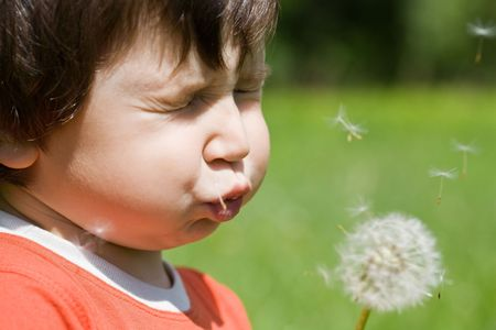 Boy blowing dandelion photo