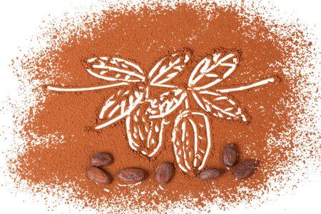 Cacaobonen en geïsoleerd op een witte achtergrond