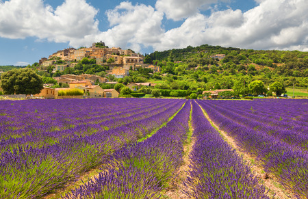 Town with lavender field. Provence, France. Фото со стока