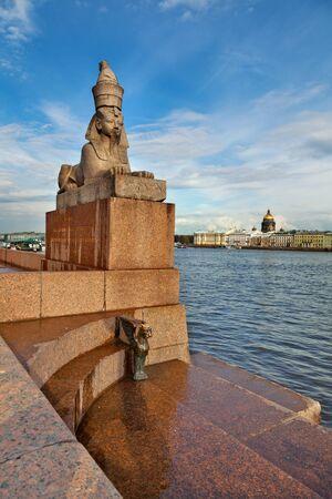 esfinge: Esfinge egipcia antigua en Universitetskaya terraplén del río Neva, San Petersburgo. Rusia