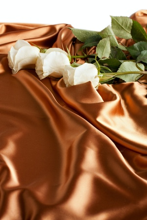 The beautiful backdrop of silk, white roses  Holiday Cards photo