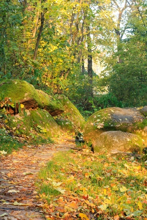 Boulders are on  the autumn footpath photo