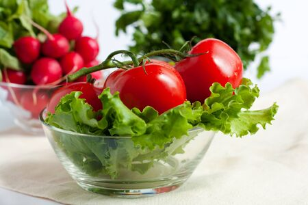 Tomatoes on the background of radish and parsley Stock Photo - 13636771