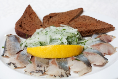 Herring and black bread with onion Stock Photo - 13747047