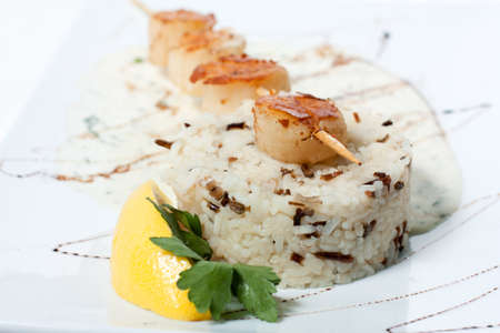 Rice with grilled fish and white sweet sauce.  fish grilled on a stick. Stock Photo - 14115394
