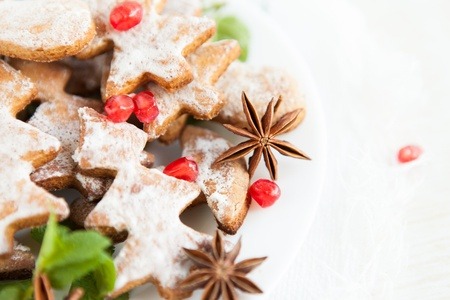 vanilla Christmas cookies close-up on a white plate Stock Photo - 16170288