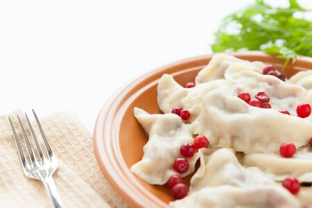 dumplings with sweet and sour berries, close up photo