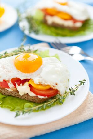appetizing homemade fried eggs, closeup Stock Photo - 17873543
