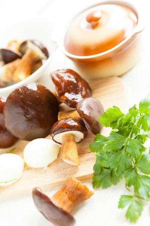 wild mushrooms and a ceramic saucepan, closeup photo