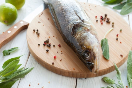 raw zander and spices on a cutting board, fish closeup Stock Photo - 18441910