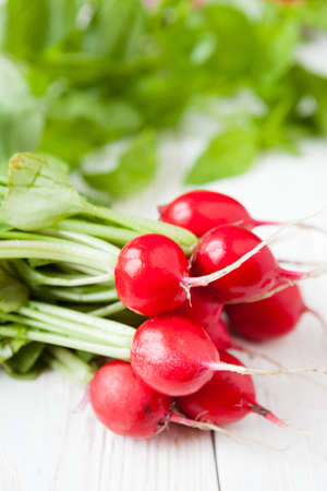 armful: armful of fresh red radish with leaves, food