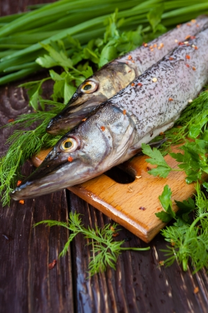 Crude purified pike on a board and tufts of green, closeup Stock Photo - 19157574