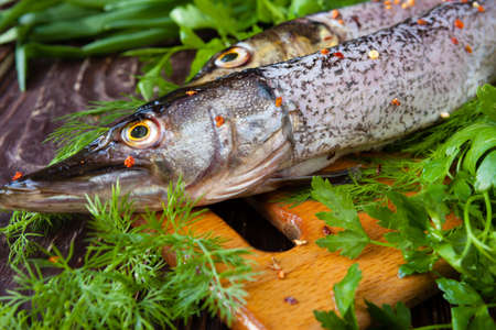 Raw purified pike on a board and sheaves of of green, closeup Stock Photo - 19157575