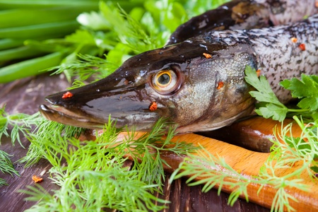 purified pike on the board and greens, closeup Stock Photo - 19157576