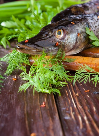 Pike on the boards and fresh greens, closeup Stock Photo - 19157572