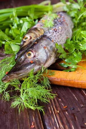 Raw fish pike on the board and greens, food closeup Stock Photo - 19417810