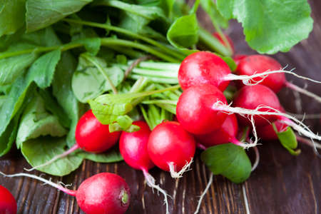armful: armful of fresh and juicy radish on the boards, food