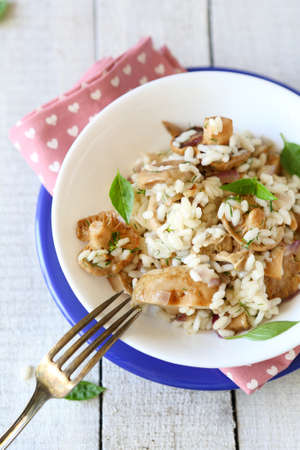 rice with fried mushrooms, top view, food photo