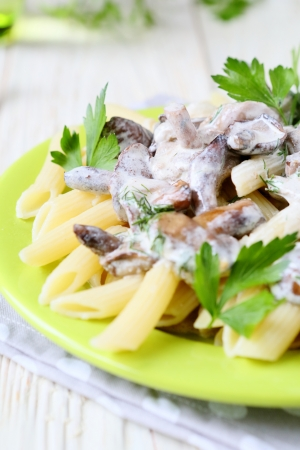 pasta with roasted mushrooms in sour cream, food close up photo