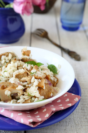 mushroom risotto with fungus slices, food photo