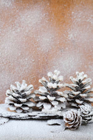 background with snow-covered pine cones, xmas photo