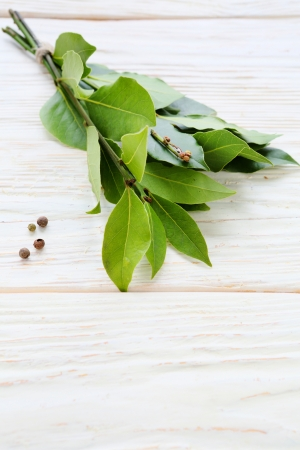 dry twigs of laurel on white board, food