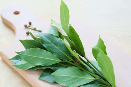 droge bladeren laurierboom, kruiden, voedsel close-up