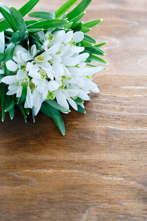 armful: armful of snowdrops on wooden , flowers Stock Photo