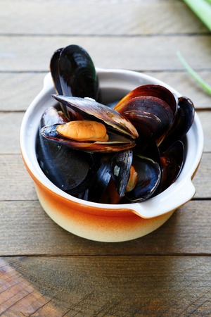 mussels steamed in a sauce, food closeup
