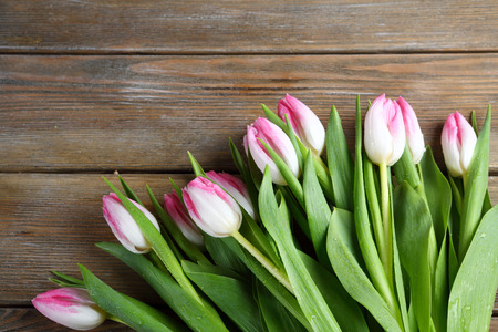 bunch of fresh tulips on wooden boards, flowers Stock Photo